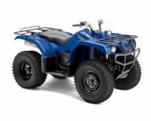 Grizzly 350 2x4 Auto